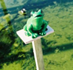 Frosch als Bwegungsmelder gibt Warnsignale, wenn sich eine Person einem Gewässer nähert